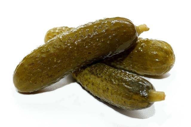 Pepino-Engorda-Pepinillos