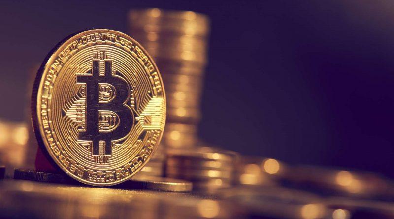 La directora de inversiones de Ark mantiene su posición de Bitcoin en $ 500,000