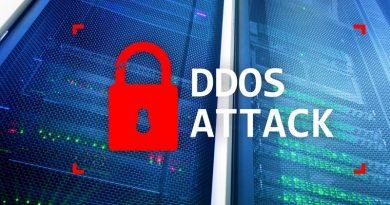 protección DDoS de 2021